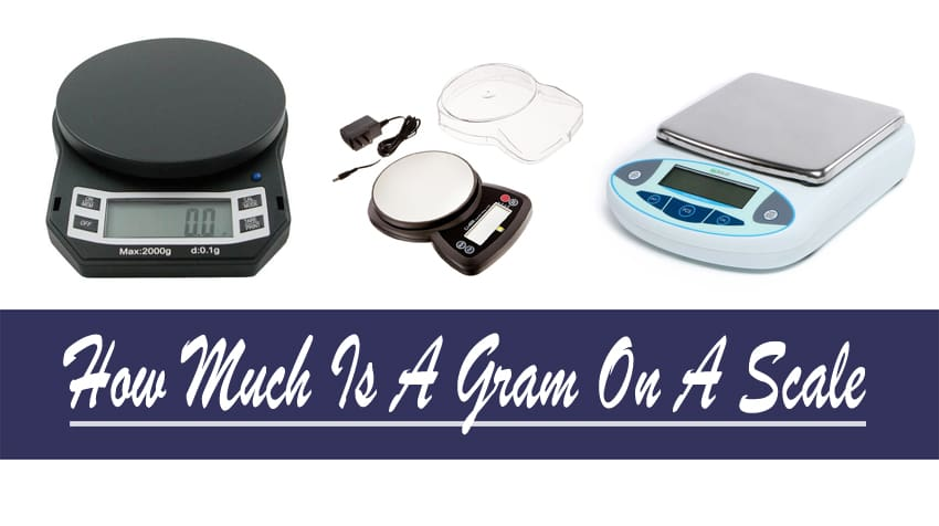How Much Is A Gram On A Scale