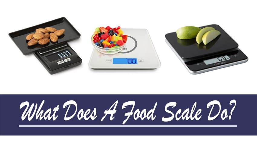 What Does A Food Scale Do