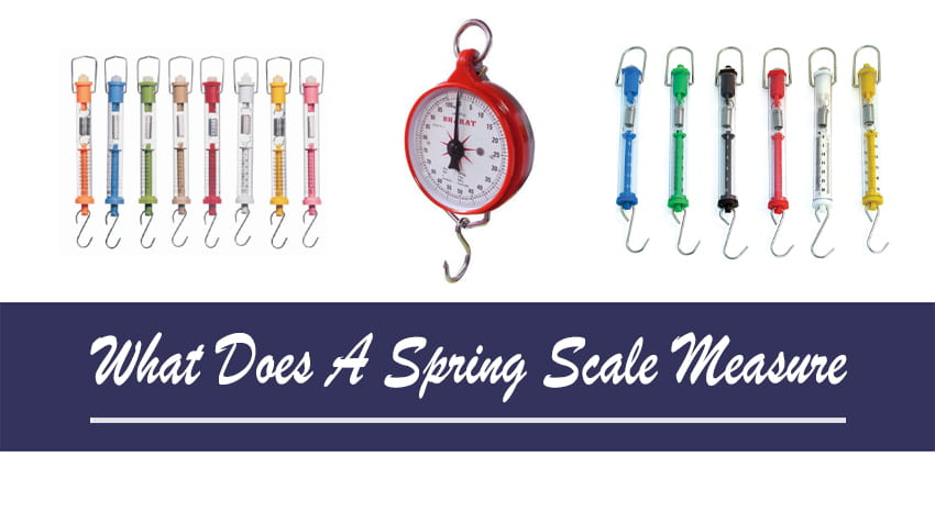 what can you measure with a spring scale