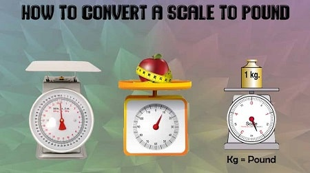 Using a Scale to Convert Pounds