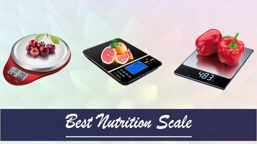 best food scale for calorie counting