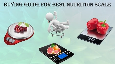Best Nutrition Scale
