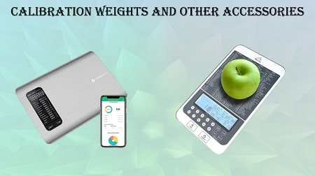 best food scale for weight loss