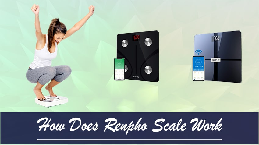 how to use renpho scale