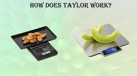 how to calibrate a taylor kitchen scale