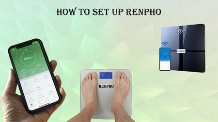 How Does Renpho Scale Work
