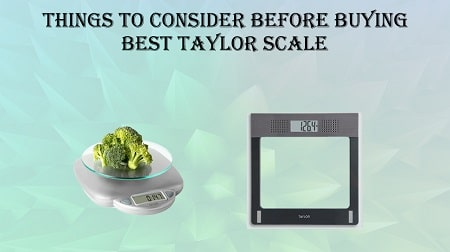 buying guide for taylor scale